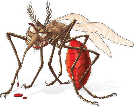 Image from http://www.rollingalpha.com/wp-content/uploads/2013/10/mosquito.jpg